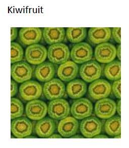 エコラップKiwifruit Mサイズ 1枚入り-エコラップKiwifruit Mサイズ 1枚入り